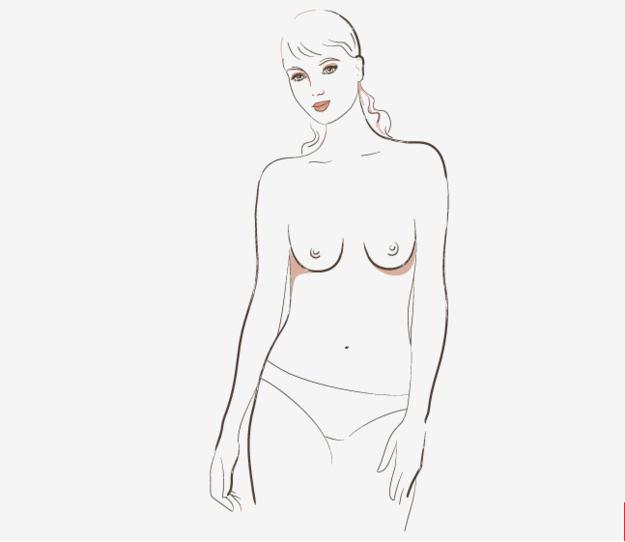 7 soorten borsten slender