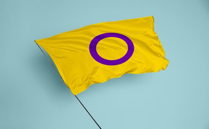 intersekse pride vlag